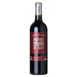 Domaine Ilarria Irouleguy rouge 2018 bouteille