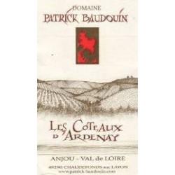 Domaine Patrick Baudouin Les Coteaux d'Ardenay rouge 2014 etiquette