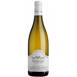 Chavy-Chouet Bourgogne Les Femelottes 2016 bouteille