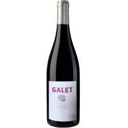 """Domaine Clusel-Roch Côteaux du Lyonnais """"Galet"""" rouge 2017 bouteille"""