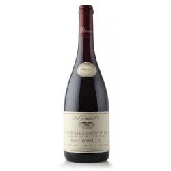 Domaine de la Pousse d'Or Chambolle-Musigny 1er Cru Les Groseilles rouge 2016 bouteille