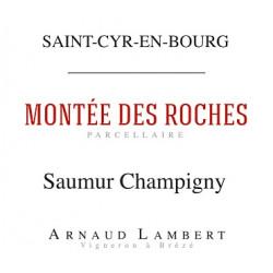 """Domaine Arnaud Lambert Saumur Champigny """"Montée des Roches"""" rouge 2017 etiquette"""