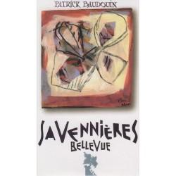 """Domaine Patrick Baudouin Savennières """"Bellevue"""" dry white 2018"""