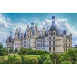 Meilleurs vignerons de Loire
