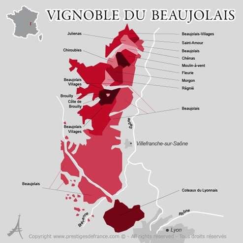 beaujolais-carte-crus-gamay